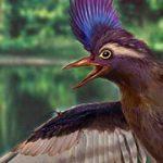 El ave más vieja del mundo