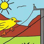 Las aves y los cuentos infantiles
